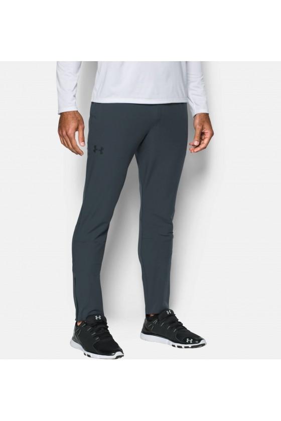 Спортивні штани сірі